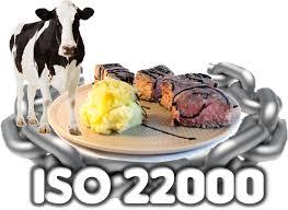 ISO 9001/22000: una certificación que puede abrir nuevos horizontes