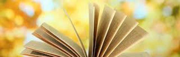Novelas cortas: arte y entretenimiento